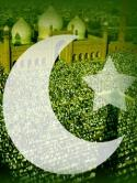 Pakistan Wallpaper for Motorola RAZR V3xx