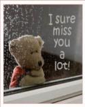 Bear Miss A Lot  Mobile Phone Wallpaper