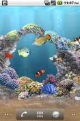 aniPet Aquarium Android Mobile Phone Wallpaper