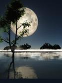 Moon Light Nokia 5132 XpressMusic Wallpaper