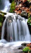 Waterfalls  Mobile Phone Wallpaper
