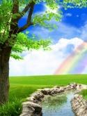Rainbow Nature 3d QMobile Hero One Wallpaper