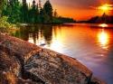 Lovely Sunset Samsung i600 Wallpaper