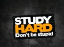 Study Hard QMobile Q55 Wallpaper
