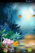 Underwater World Wallpaper for LG Optimus L3 II Dual