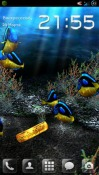 My 3D Fish Android Mobile Phone Wallpaper