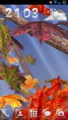 Autumn Tree Android Mobile Phone Wallpaper