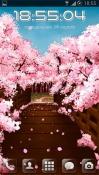 Sakura's bridge Android Mobile Phone Wallpaper