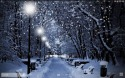 Winter Snow Android Mobile Phone Wallpaper