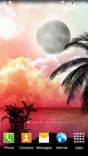 Tropical Night Android Mobile Phone Wallpaper