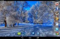 Nice Winter Android Mobile Phone Wallpaper