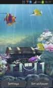 Aquarium And Fish Android Mobile Phone Wallpaper