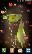 Love: Birds Android Mobile Phone Wallpaper