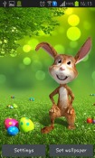 Easter Bunny Android Mobile Phone Wallpaper