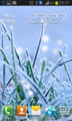 Winter Grass Android Mobile Phone Wallpaper