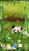 Funny Panda Android Mobile Phone Wallpaper