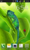 Chameleon 3D Android Mobile Phone Wallpaper