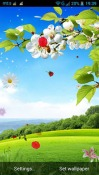 Spring Android Mobile Phone Wallpaper