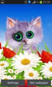 Spring: Kitten Android Mobile Phone Wallpaper
