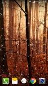 Fireflies Droplets HD QMobile NOIR A10 Wallpaper