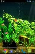 Fishbowl HD VGO TEL Venture V1 Wallpaper