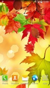 Autumn Android Mobile Phone Wallpaper