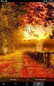 Falling Leaves Realme U1 Wallpaper