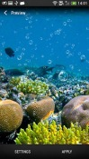 Coral Reef Realme U1 Wallpaper