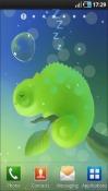 Mini Chameleon Android Mobile Phone Wallpaper