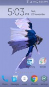 Betta Fish 3D Android Mobile Phone Wallpaper