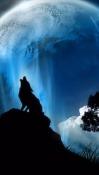 Moon Light QMobile NOIR A10 Wallpaper