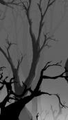 Mystic Forest QMobile NOIR A10 Wallpaper