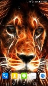 Wild Animals 3D Lava A77 Wallpaper