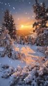 Snow Celkon A359 Wallpaper