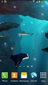 Sharks 3D Huawei Ascend Plus Wallpaper