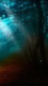 Fireflies Huawei nova 5z Wallpaper