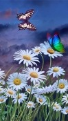 Summer: Flowers And Butterflies Android Mobile Phone Wallpaper