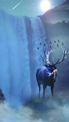 Winter Deer Realme U1 Wallpaper