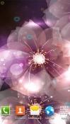 Download Free Luminous Flower Mobile Phone Wallpapers