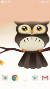Cute Owl Realme U1 Wallpaper
