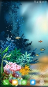 Underwater World Android Mobile Phone Wallpaper