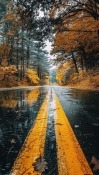 Road Samsung Galaxy Tab S6 Wallpaper