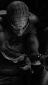 Spider Man  Mobile Phone Wallpaper
