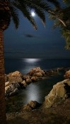 Moonlight Prestigio MultiPhone 4505 Duo Wallpaper