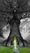 Tree QMobile Smart View Max Wallpaper