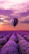 Air Balloon Lenovo Tab3 10 Wallpaper