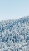Snow HTC Desire 520 Wallpaper